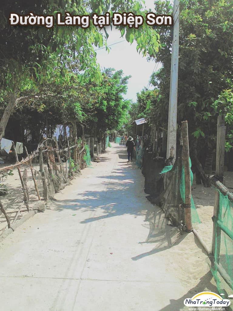 Con đường làng tại Điệp Sơn