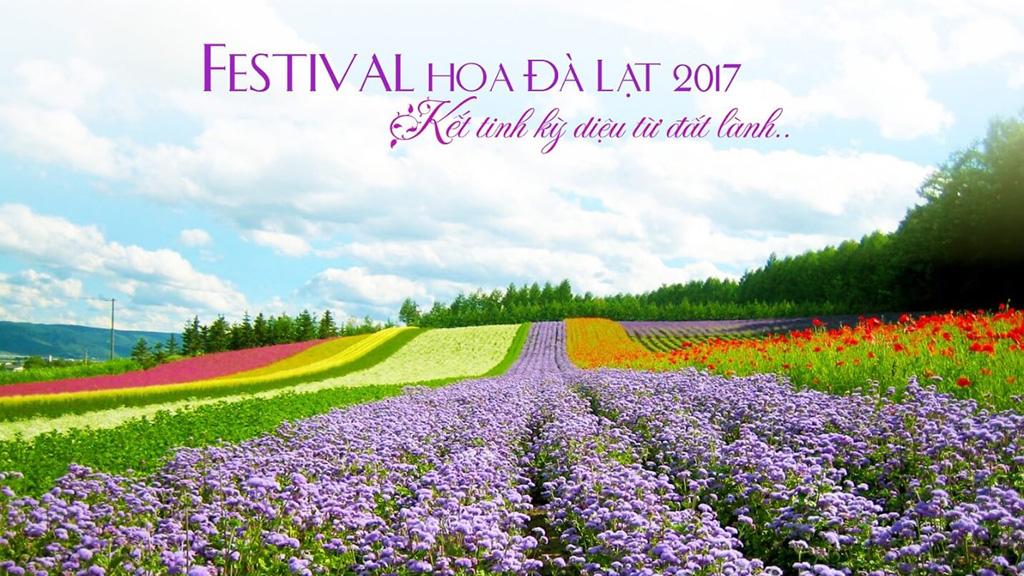 Chương Trình FESTIVAL Hoa Đà Lạt - Kết Tinh Kỳ Diệu Từ Đất Lành Lần Thứ VII 2017
