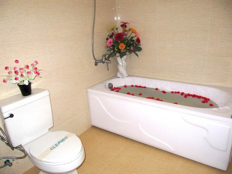 Khách Sạn Camellia 2